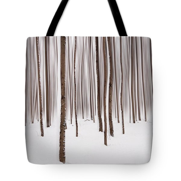 Winter Tote Bag by Mircea Costina Photography
