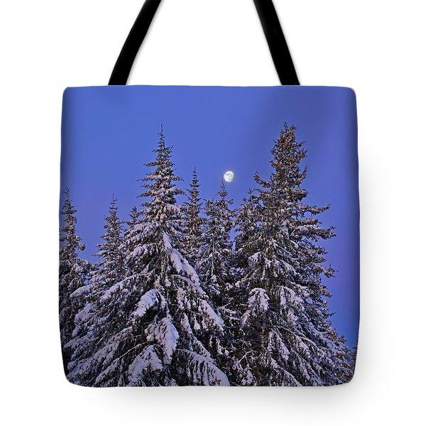 Winter Night Tote Bag by Michele Cornelius