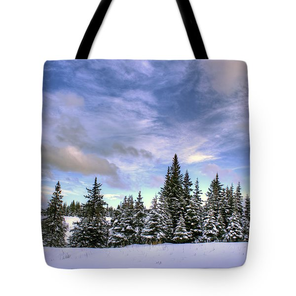 Winter Sky Tote Bag by Michele Cornelius