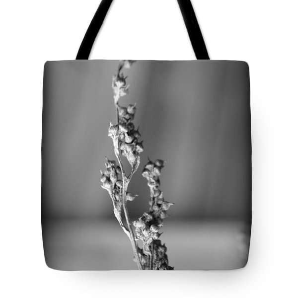 Winter Stem II Tote Bag