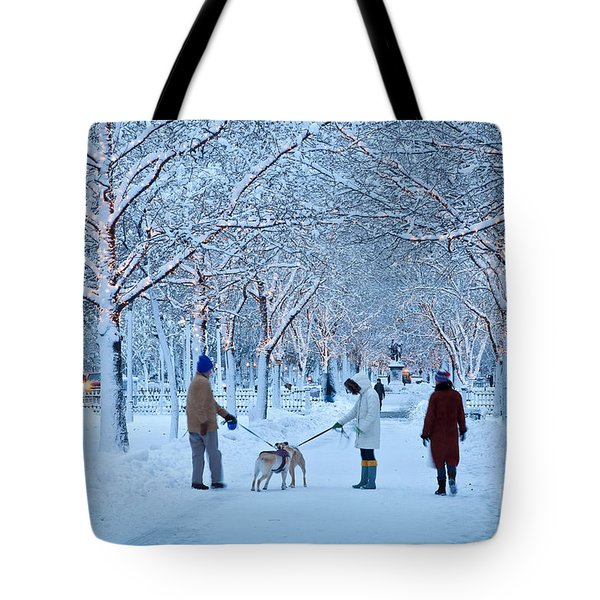 Tote Bag featuring the photograph Winter Twilight Walk by Susan Cole Kelly