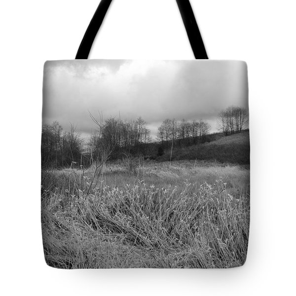 Tote Bag featuring the photograph Winters Breeze by Kathleen Grace