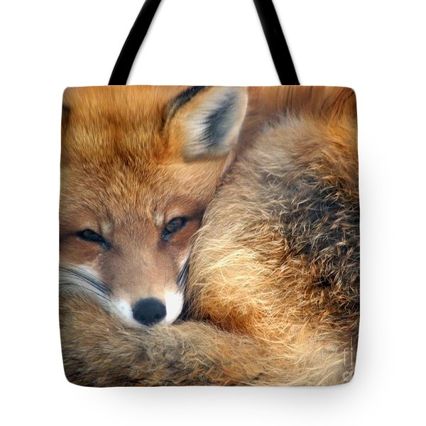 Winter's Chill Tote Bag by Living Color Photography Lorraine Lynch