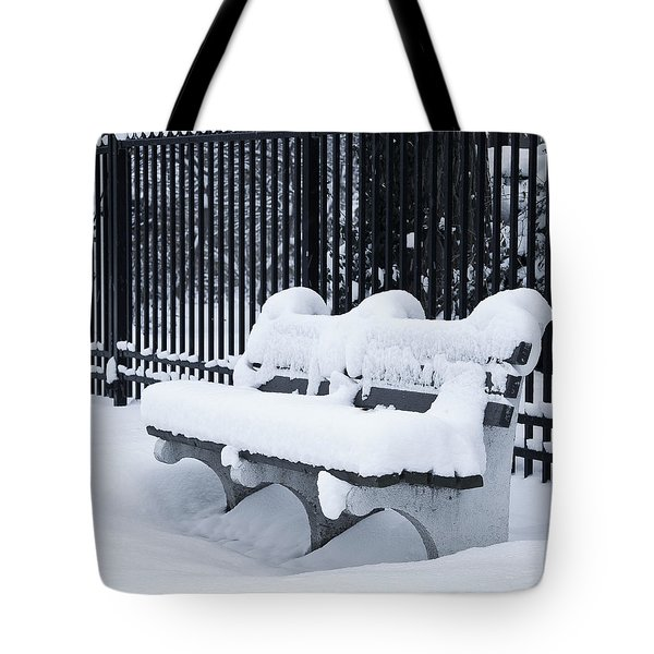Winter's Quiescence Tote Bag by Dale Kincaid