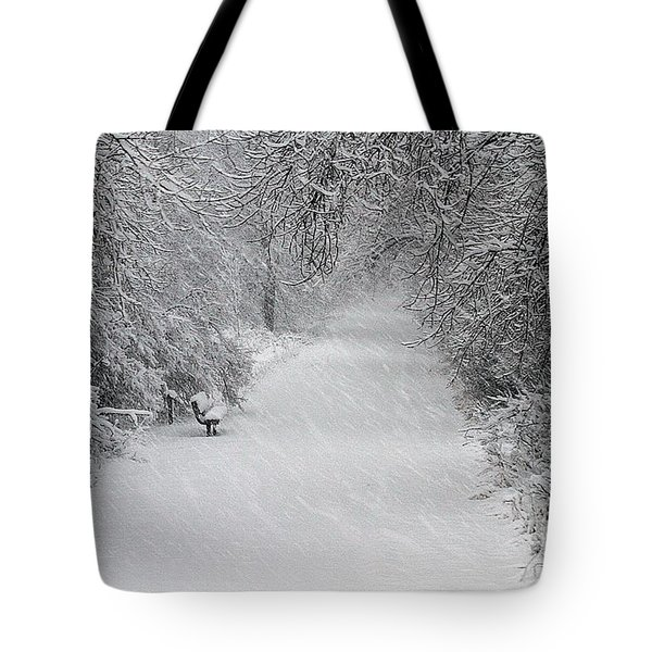 Tote Bag featuring the photograph Winter's Trail by Elizabeth Winter