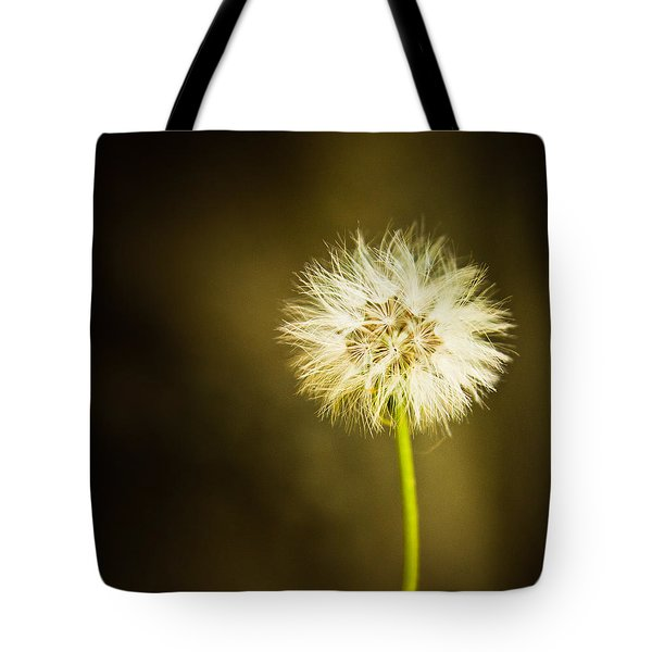 Tote Bag featuring the photograph Wishes by Sara Frank