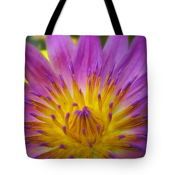 Wishing On A Star Tote Bag by Rachel Cohen