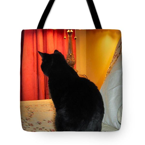 Witches Cat Tote Bag by Art Dingo