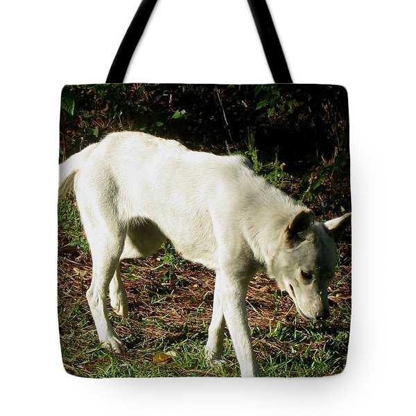 Tote Bag featuring the photograph Wolf 2 by Maria Urso