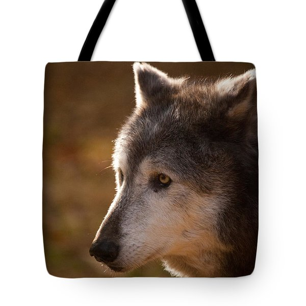Wolf Outlined By The Sun Tote Bag by Karol Livote