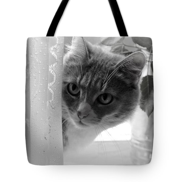 Wondering. Kitty Time Tote Bag by Jenny Rainbow