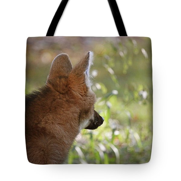 Wondering Wolf Tote Bag by Karol Livote