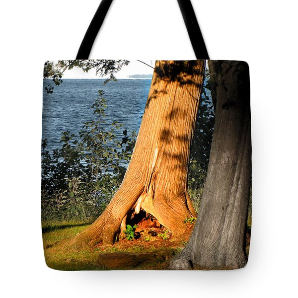 Wonderlands Rabbit Hole Tote Bag by Ms Judi