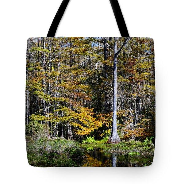 Wood Duck Pond Tote Bag by Melanie Moraga