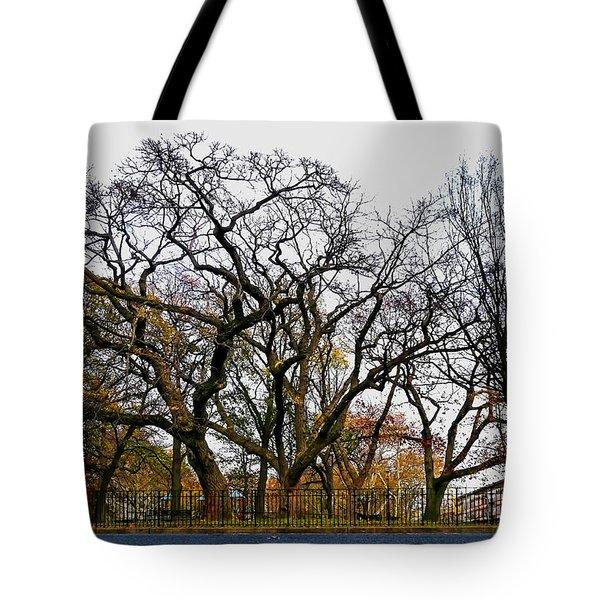Wood Hood Tote Bag