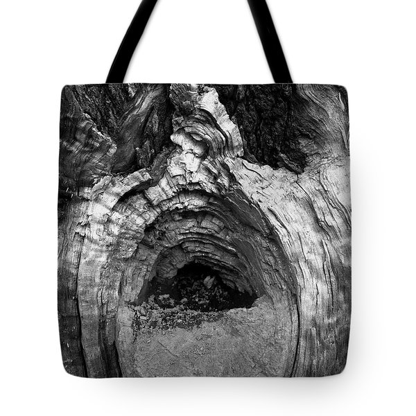 Wood You Smile  Tote Bag by Trish Hale