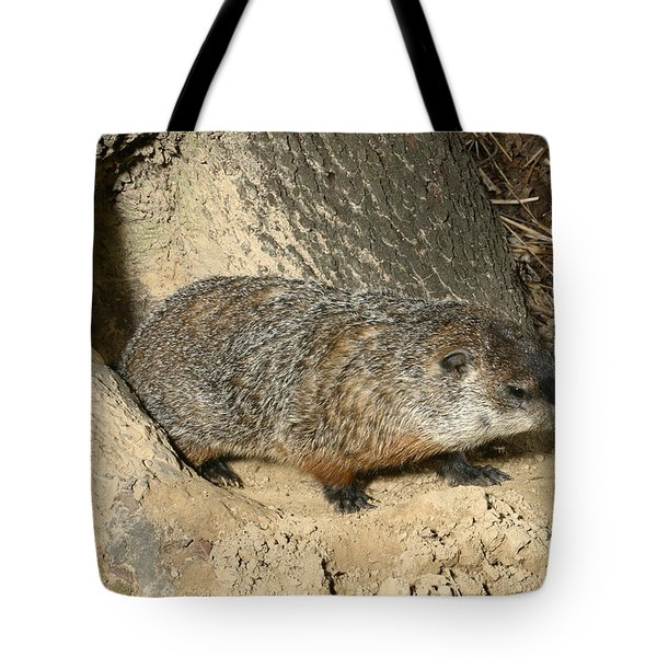 Woodchuck Tote Bag by Ted Kinsman