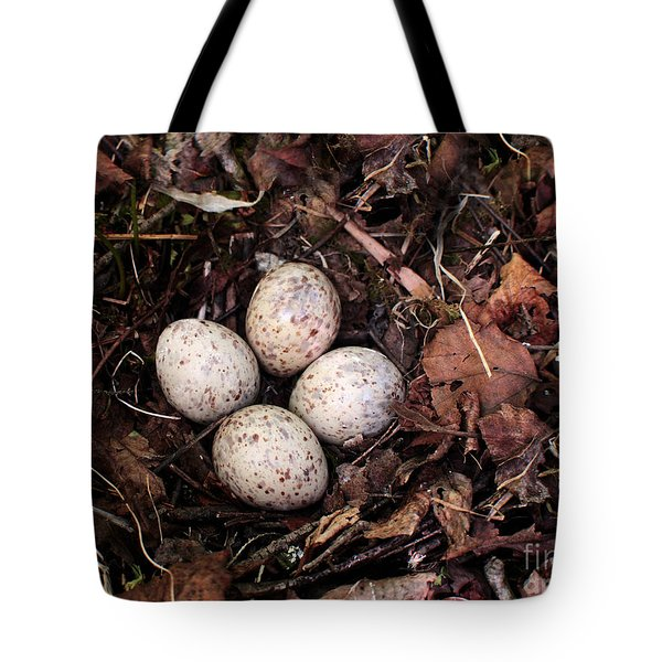 Woodcock Nest And Eggs Tote Bag by Angie Rea