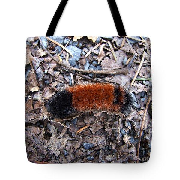 Wooly Bear Caterpillar Tote Bag