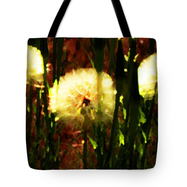 Worlds Within Worlds Tote Bag by Lenore Senior