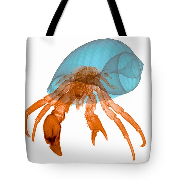X-ray Of Hermit Crab Tote Bag by Ted Kinsman