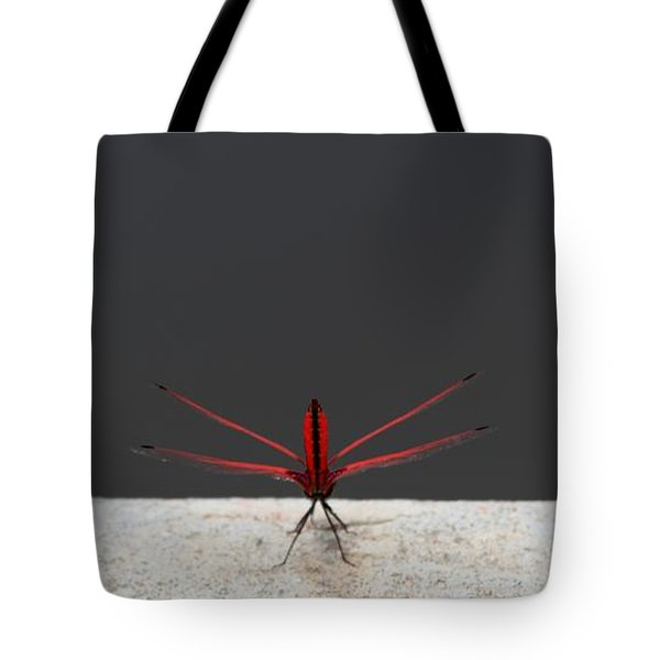 Tote Bag featuring the photograph X Wing Dragonfly by Nola Lee Kelsey