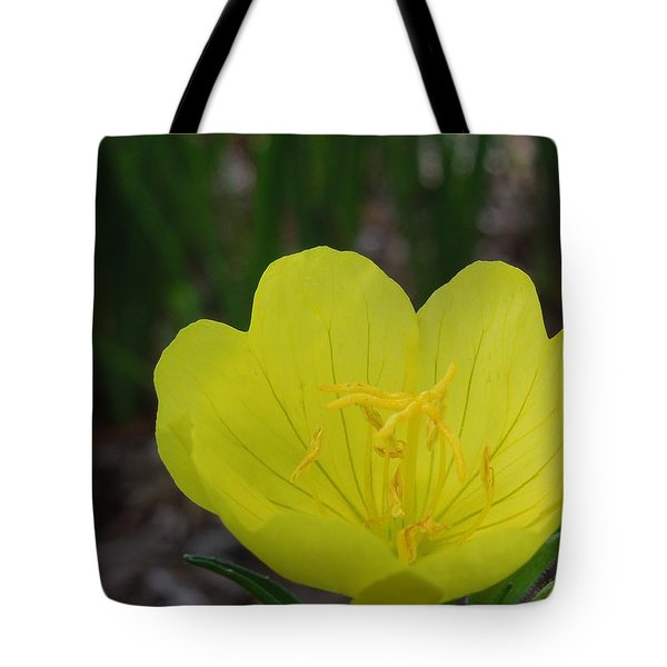 Yellow And Bright Tote Bag by Chad and Stacey Hall