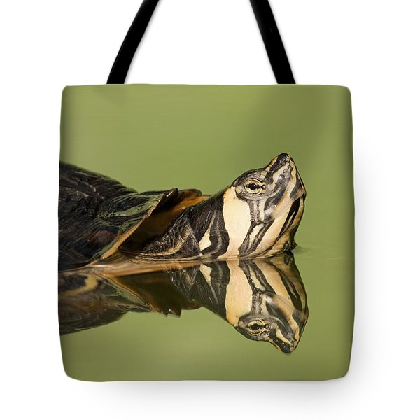 Yellow-bellied Slider Trachemys Scripta Tote Bag by Ingo Arndt