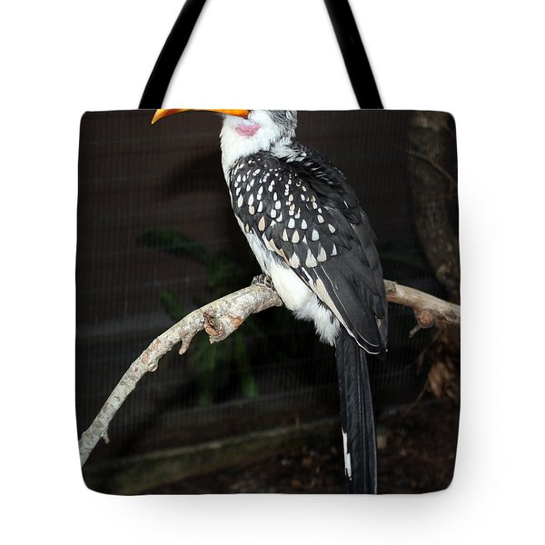 Tote Bag featuring the photograph Yellow-billed Hornbill by Kathy  White