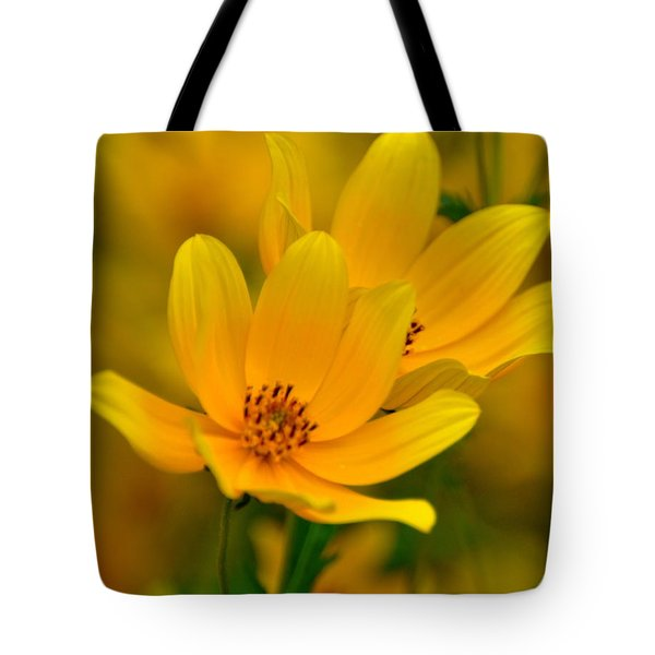 Tote Bag featuring the photograph Yellow Blaze by Marty Koch