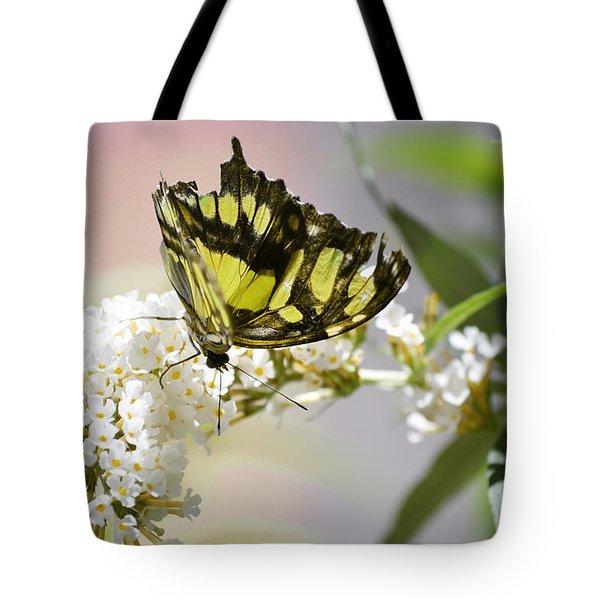 Yellow Butterfly Beauty Tote Bag by Andrea Hazel Ihlefeld