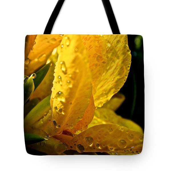 Yellow Canna Lily Tote Bag by Susan Herber