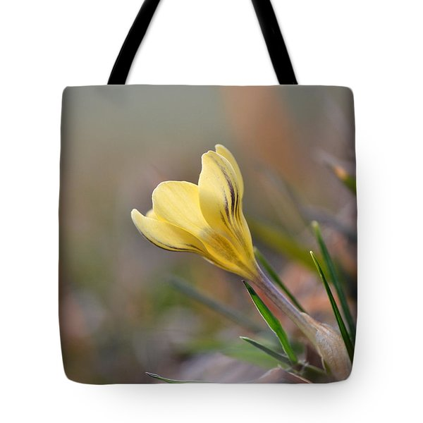 Yellow Crocus Tote Bag