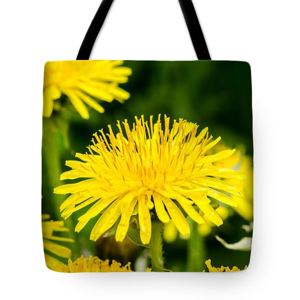 Tote Bag featuring the photograph Yellow Dandelions by Michael Goyberg