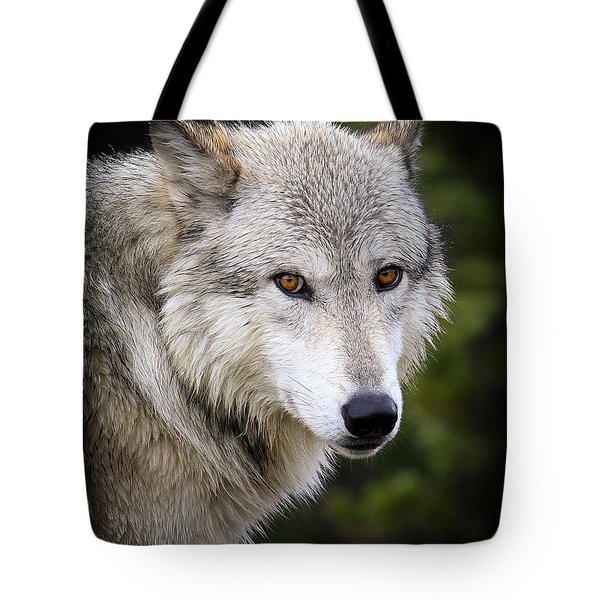 Tote Bag featuring the photograph Yellow Eyes by Steve McKinzie