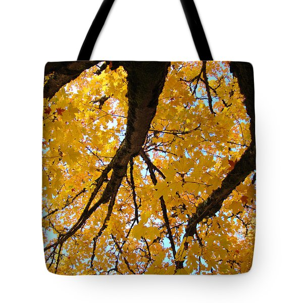 Yellow Fall Trees Prints Autumn Leaves Tote Bag by Baslee Troutman
