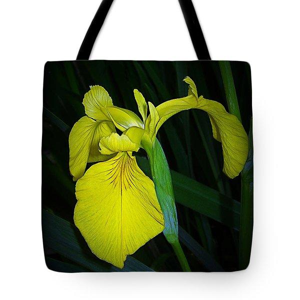 Yellow Iris Tote Bag by Judi Bagwell