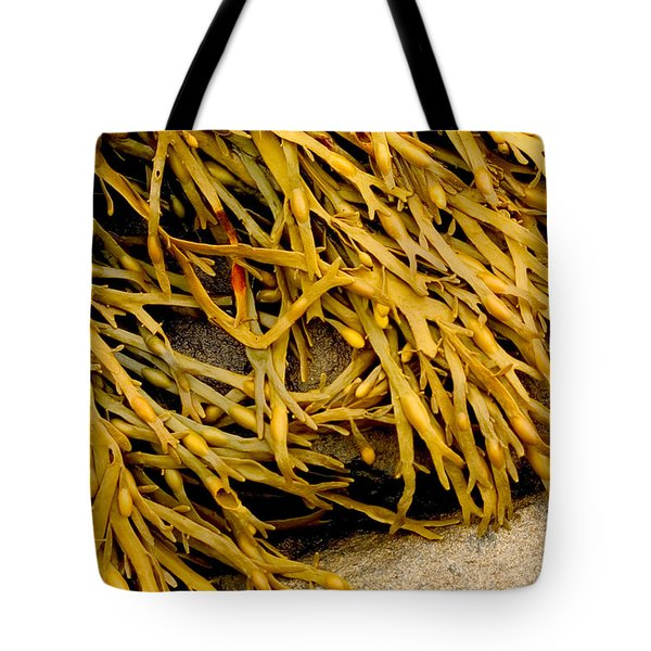 Tote Bag featuring the photograph Yellow Kelp by Brent L Ander