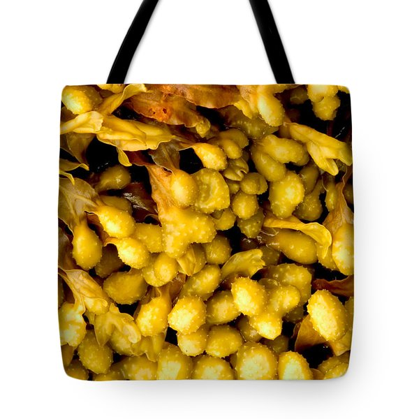 Tote Bag featuring the photograph Yellow Kelp Pods by Brent L Ander