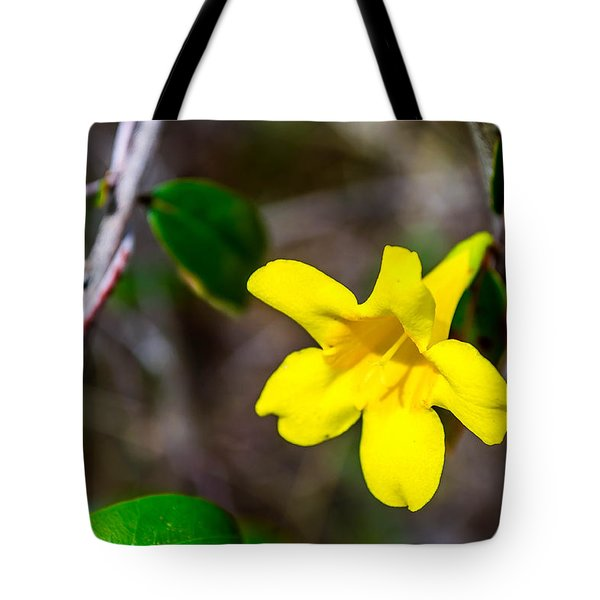 Tote Bag featuring the photograph Yellow by Shannon Harrington