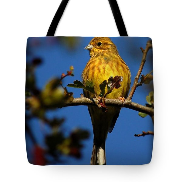 Yellowhammer Tote Bag