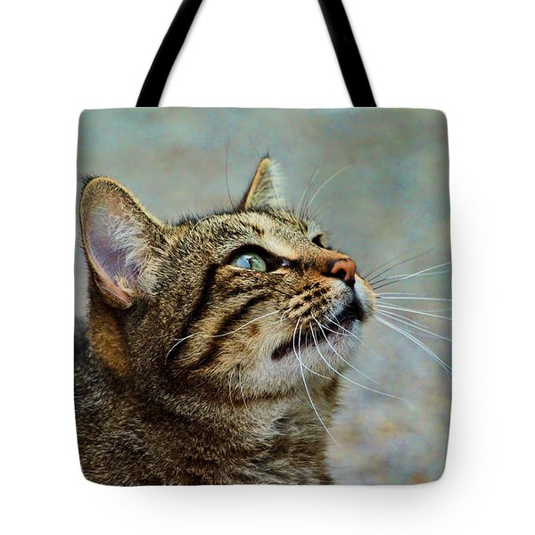 Yes I Am A Pretty Kitty Tote Bag by Debbie Portwood
