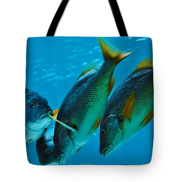 Yo Yous Headin Da Wrong Way Tote Bag by DigiArt Diaries by Vicky B Fuller
