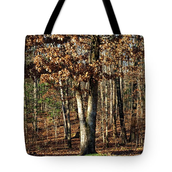 You Can Dream Tote Bag by Shari Nees
