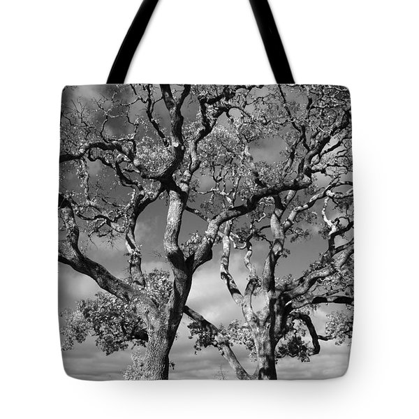 You Never Let Me Down Tote Bag by Laurie Search