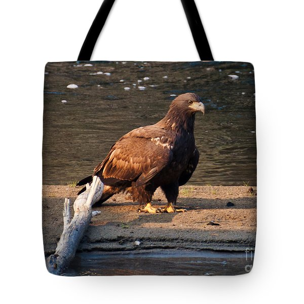 Tote Bag featuring the photograph Young And Proud by Cheryl Baxter