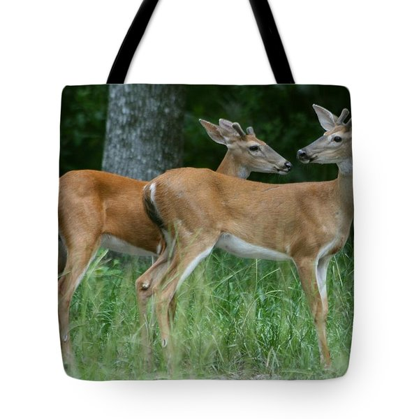 Tote Bag featuring the photograph Young Bucks by Myrna Bradshaw
