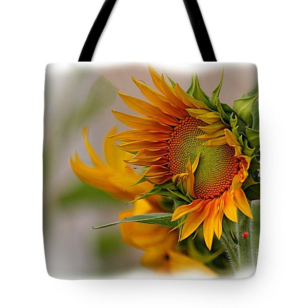 Young Sunburst Tote Bag