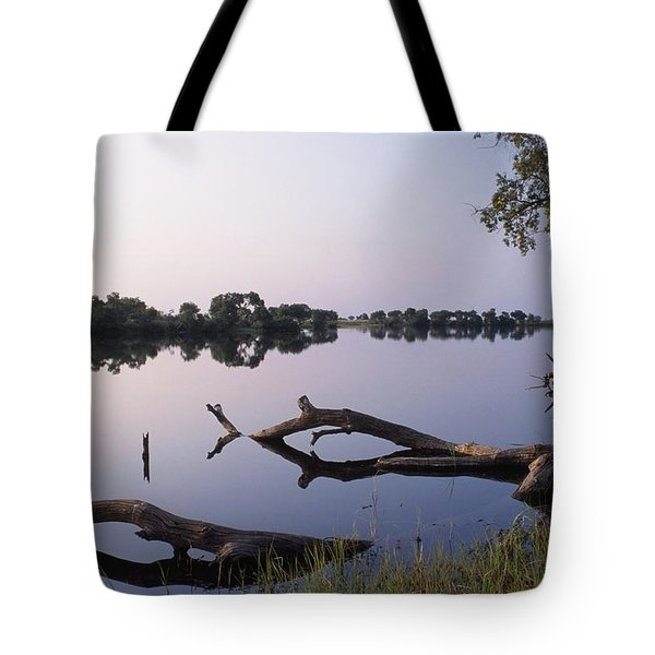 Zambesi River Tote Bag by Axiom Photographic