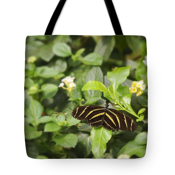 Tote Bag featuring the photograph Zebra Butterfly by Marianne Campolongo